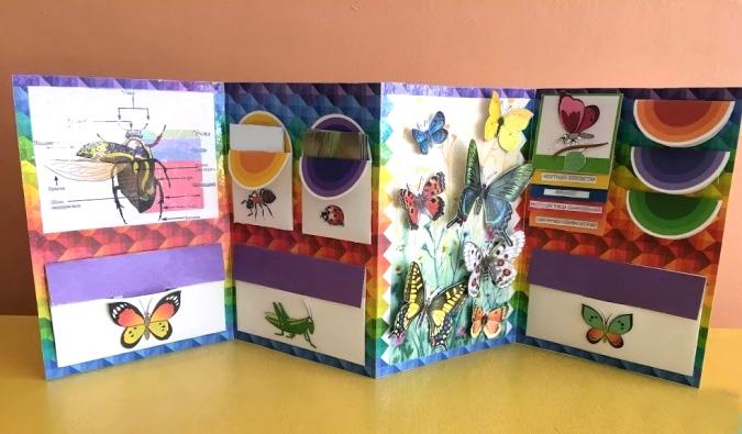 3D Butterfly Paper Craft