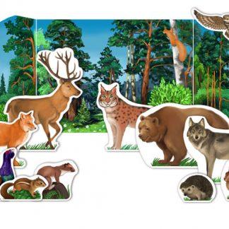 Forest Habitat Diorama: summer