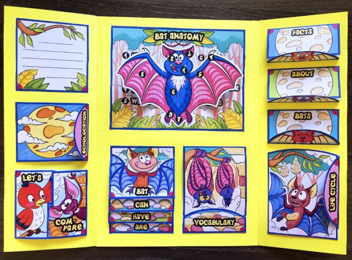 All about bats Lapbook