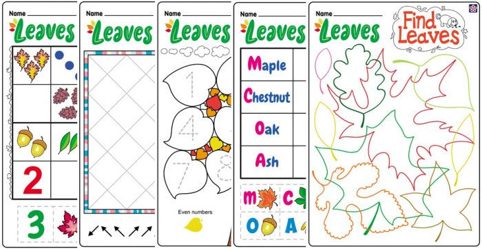 Fall Leaves Worksheets