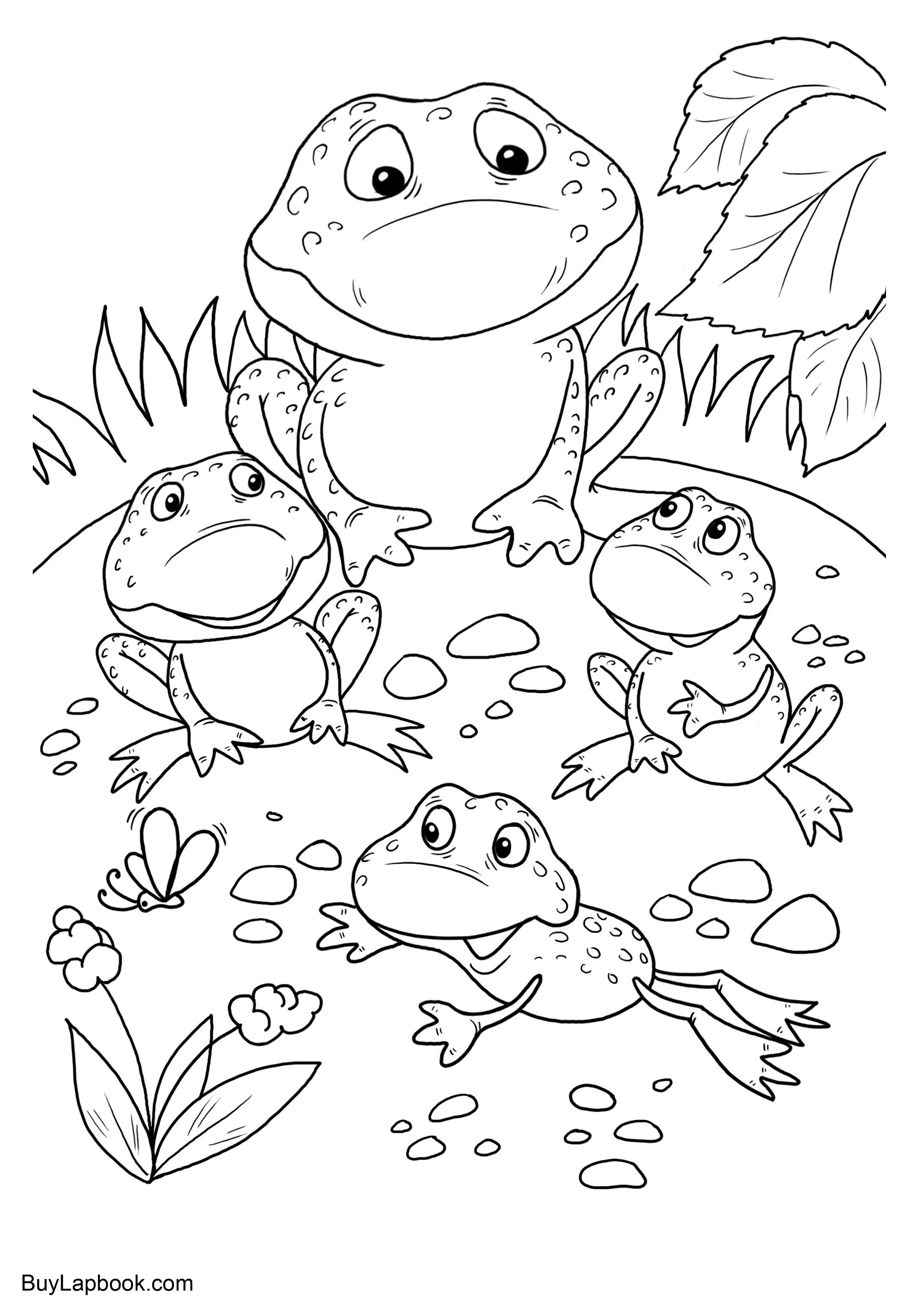 Frog Coloring Pages | 3508x2480