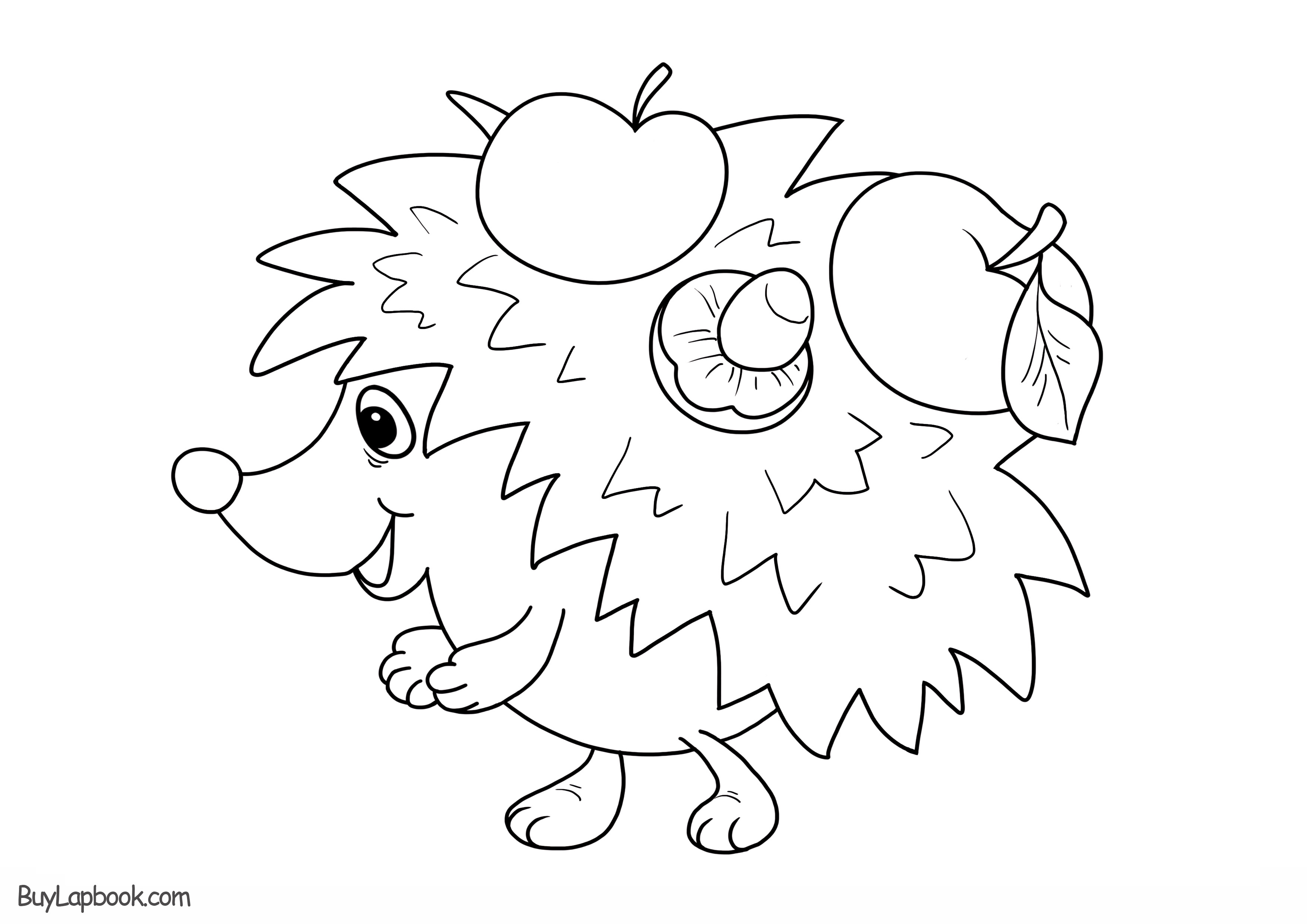 Hedgehogs Free Printable Coloring And Activity Page For Kids Buylapbook